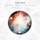 Are You There / End of by Tek-One