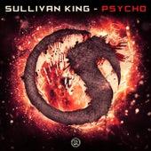 Psycho by Sullivan King