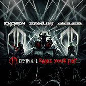 Raise Your Fist by Excision