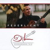 Feuerlicht by Diknu Schneeberger Trio