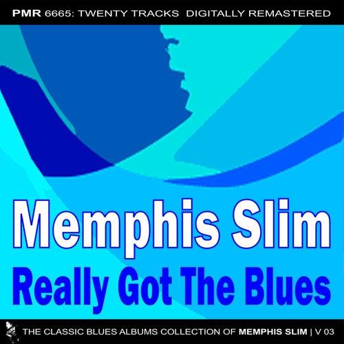 Really Got The Blues de Memphis Slim