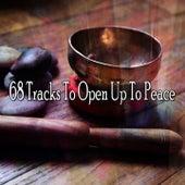 68 Tracks To Open Up To Peace de Meditação e Espiritualidade Musica Academia