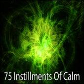 75 Instillments Of Calm de Meditación Música Ambiente