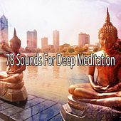 78 Sounds For Deep Meditation de Nature Sounds Artists