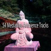 54 Mediation Ambience Tracks von Massage Therapy Music