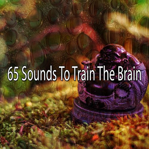 65 Sounds To Train The Brain by Lullabies for Deep Meditation