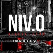 Underground Flavor EP by Niveau Zero