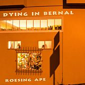 Dying in Bernal by Roesing Ape