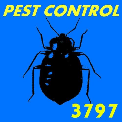 Pest Control von 3797