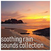 #17 Stress Reducing Rain Storms - Calm the Mind and Relax de Sounds of Rain