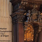 Mahler Symphonies 1 & 2 at Organ by David Ennarqua