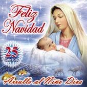 Feliz Navidad: Arrullo al Niño Dios by Alabanza Musical
