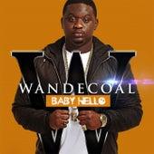 Baby Hello de Wande Coal