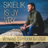 Skielik Is Jy Vry - Sing Die Musiek Van Koos Du Plessis by Wynand Strydom