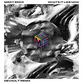 What's It Like Now (Devault Remix) von Mikky Ekko