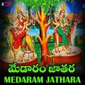 Medaram Jathara de Various Artists