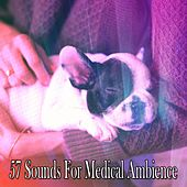 57 Sounds For Medical Ambience de White Noise Babies