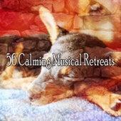 56 Calming Musical Retreats de Sleepicious