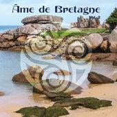 Âme de Bretagne Vol. 2 de Various Artists