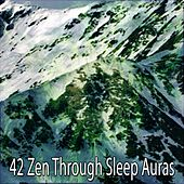 42 Zen Through Sleep Auras by Ocean Sounds Collection (1)