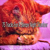 75 Tracks For A Sleepy Night Slumber de White Noise Babies
