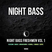 Night Bass Freshmen Vol 1 von Various Artists