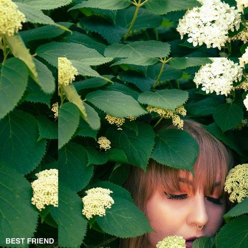 Best Friend by Lili K