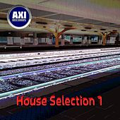 House Selection 1 de Various Artists