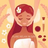Pure Relax in Spa de Massage Tribe