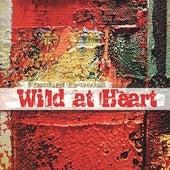 Wild At Heart by Rachel Brooks