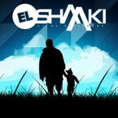 31 de Diciembre de El Shaaki
