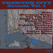 Trenton City Sounds Vol.1 by Various Artists
