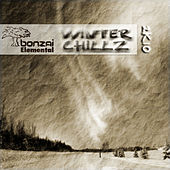 Bonzai Elemental - Winter Chillz 2k10 by Various Artists
