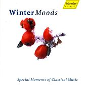 Winter Moods by Various Artists