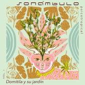 Domitila y Su Jardín de Sonámbulo