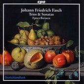 Fasch: Bassoon Sonata / 3 Quartets / 2 Trios / Canon by Epoca Barocca
