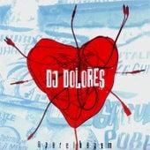 Aparelhagem de DJ Dolores