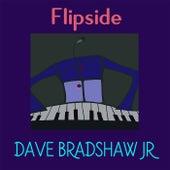 Flipside by Dave Bradshaw Jr.