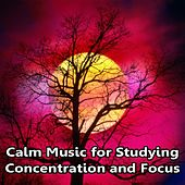 Calm Music for Studying, Concentration and Focus by Concentration Sounds