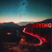 Driving de Raven