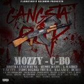 Gangsta Rap de Various Artists