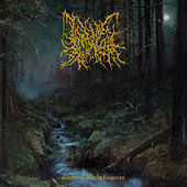 Within a World Forgotten by Infernal Coil