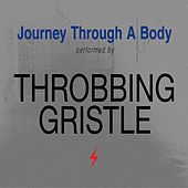 Journey Through a Body de Throbbing Gristle