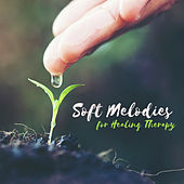 Soft Melodies for Healing Therapy von Soothing Sounds