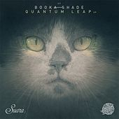 Quantum Leap de Booka Shade