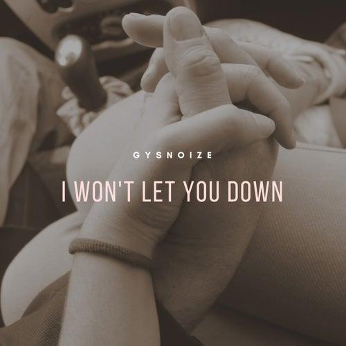 I Won't Let You Down di Gysnoize