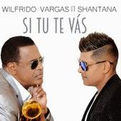 Si Tú Te Vas by Wilfrido Vargas