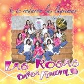 Se Te Rodaron las Lágrimas de Las Rosas Banda Femenil