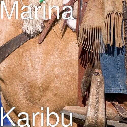 Karibu de Marina