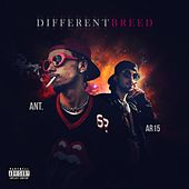Different Breed by Ant (comedy)